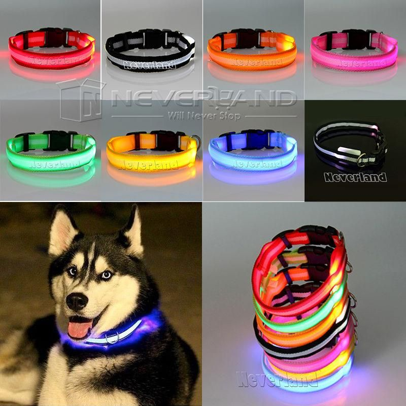 Premium Glow In The Dark LED Dog Safety Collar #0: 0d4d fcd7a7af b945e1