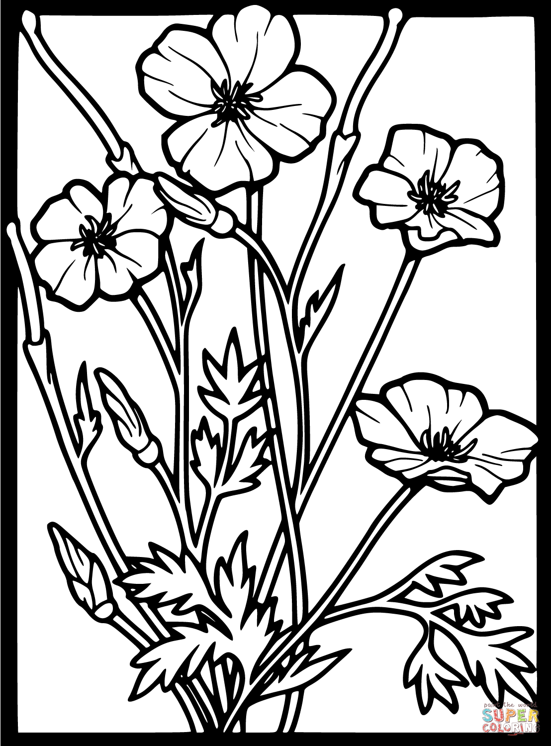 Unique Poppy Coloring Pages 9 Flowers Coloring pages Select