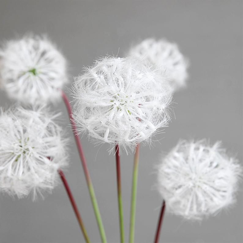 2pcs White Dandelion Real Touch Silk Flower Artificial Flowers Etsy In 2020 Flower Bouquet Wedding White Dandelion Silk Flowers