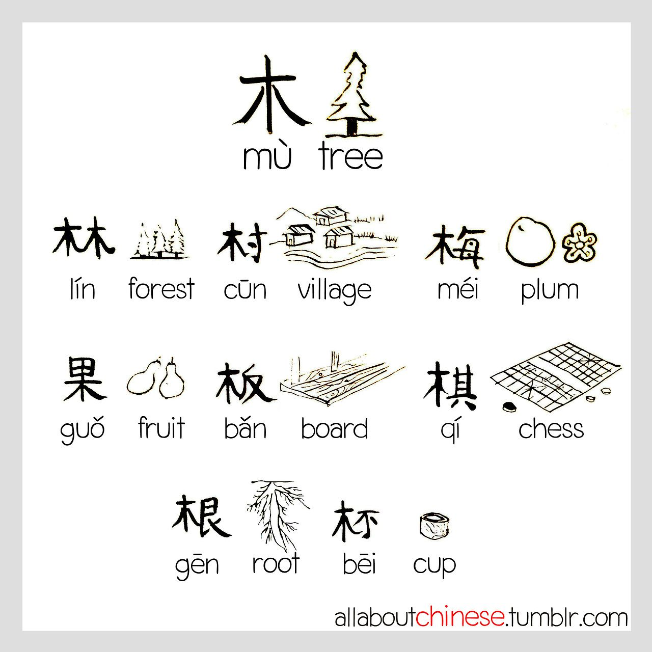 Tree Allaboutchinese Mandarin Pinterest Interesting Words