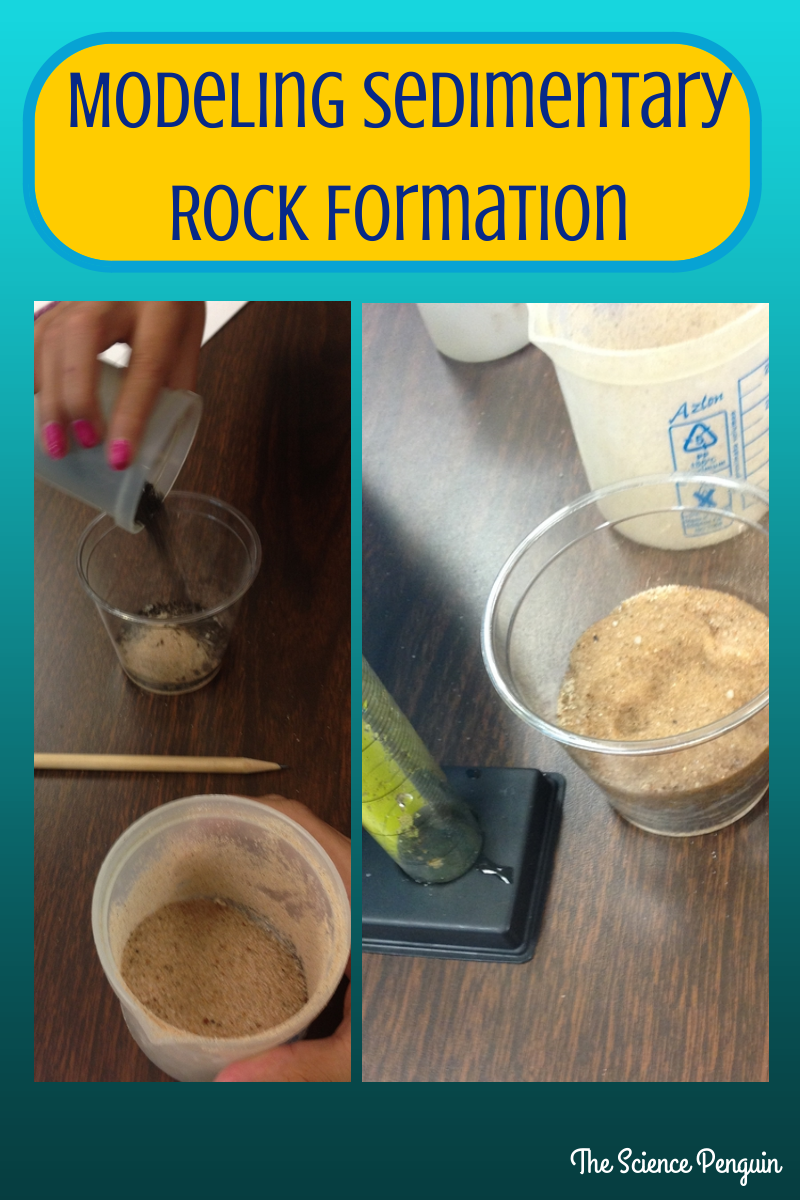 The Science Penguin: Sedimentary Rock and Fossil Fuels {After School Science Tutoring}