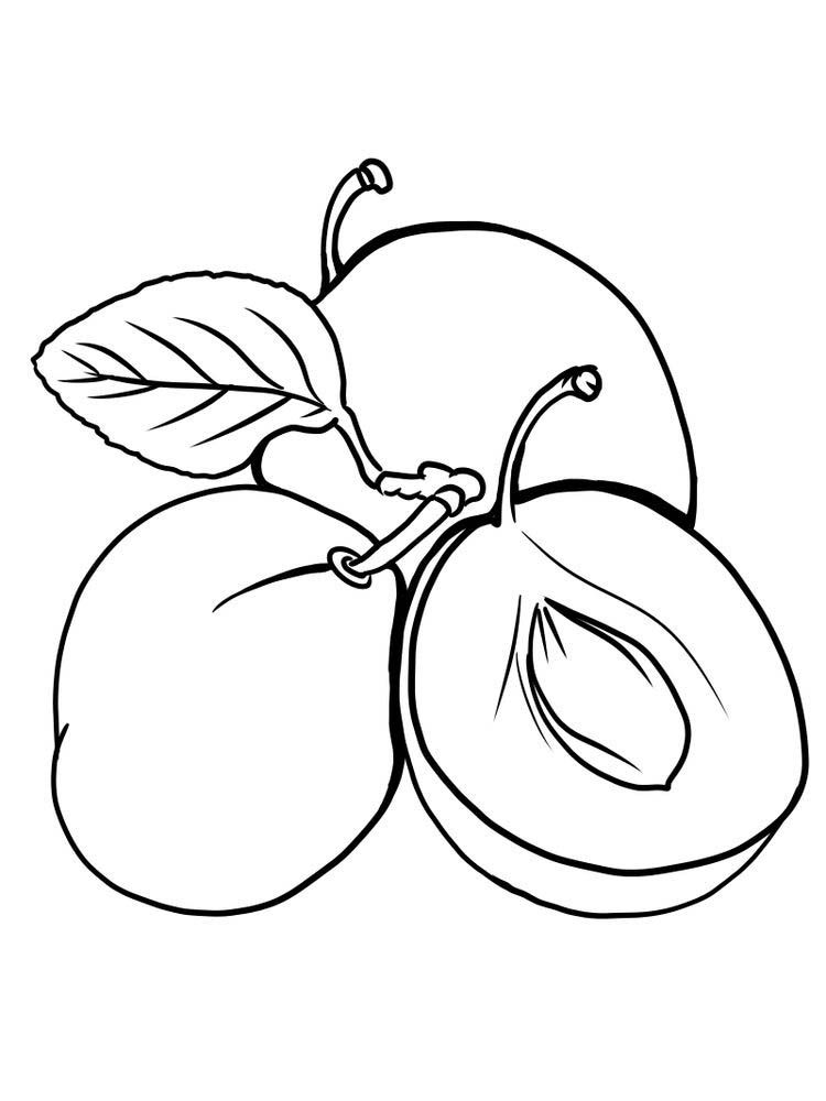 Appricots Coloring Pages Picture To Printable | 1000x750
