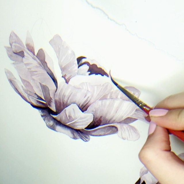 Grace Popp working on some watercolor peonies #wip
