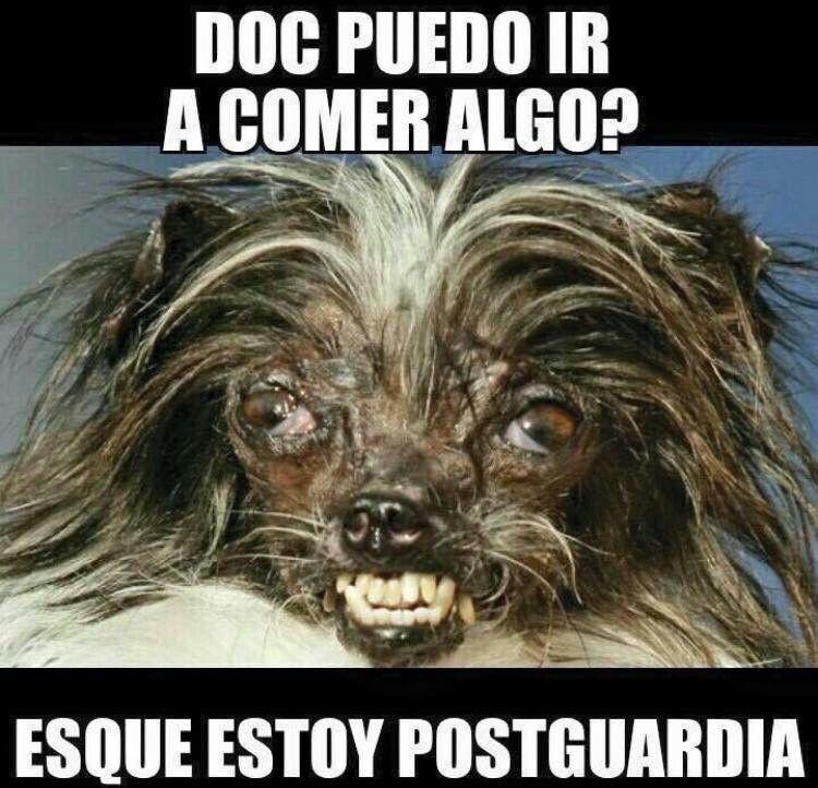 de postguardia yosiempre memes medicina doctores