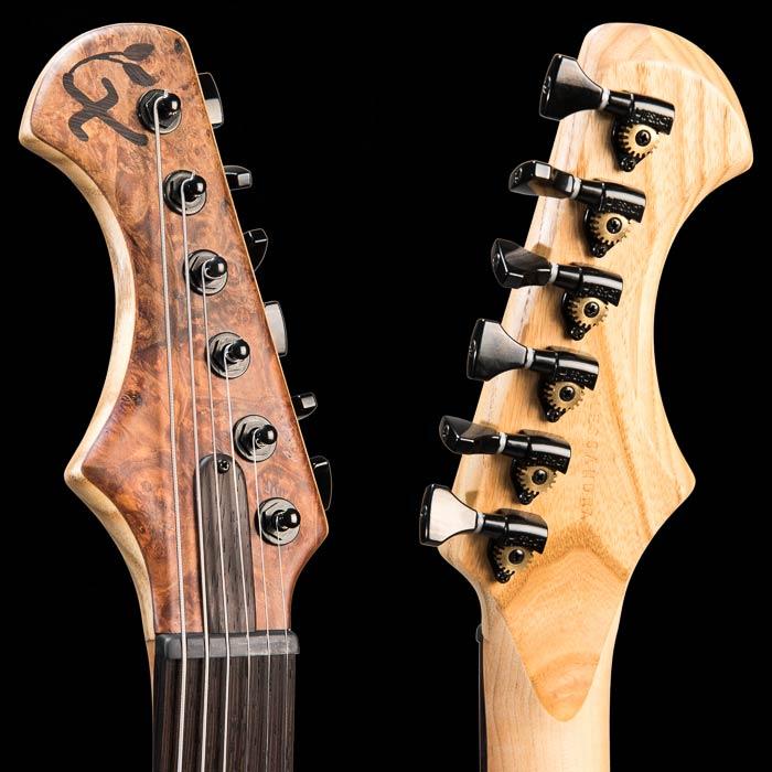 Pin By A Zuidema On Xylem Guitars Guitar Tuning Custom Guitar Guitar Photography