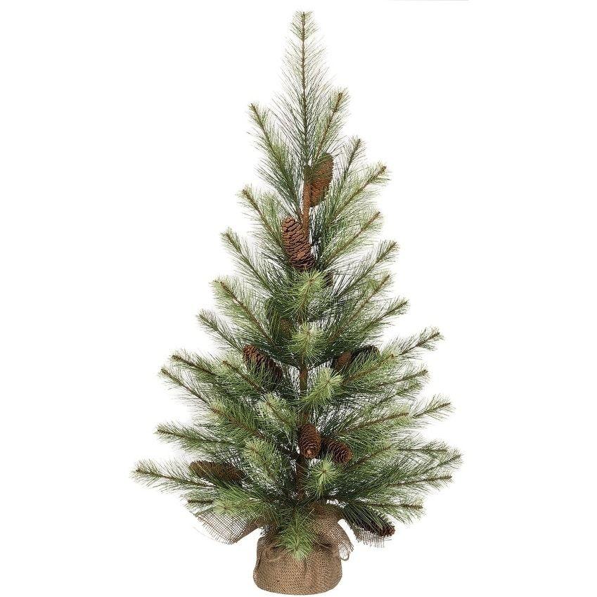 Sullivans Black Hills Pine Tree Pine tree, Christmas store and