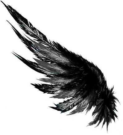 Image result for feather wing tattoo