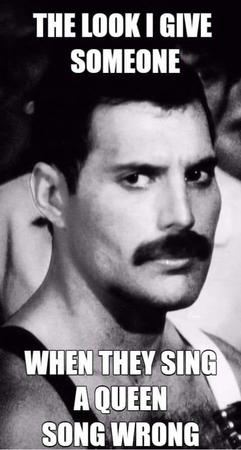 Idea By Styles On Queen Darlings In 2020 Queen Meme Freddie Mercury Quotes Queen Love