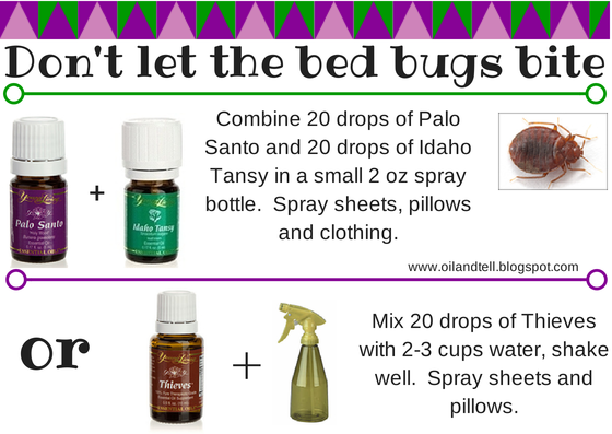 Oil and Tell Bed Bugs YL