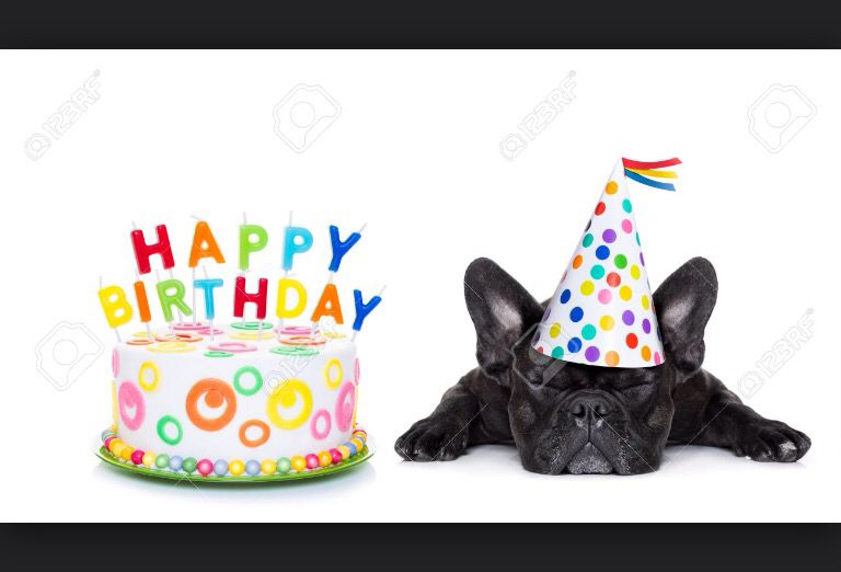 Happy Birthday French Bulldog Happy Birthday French Bulldog