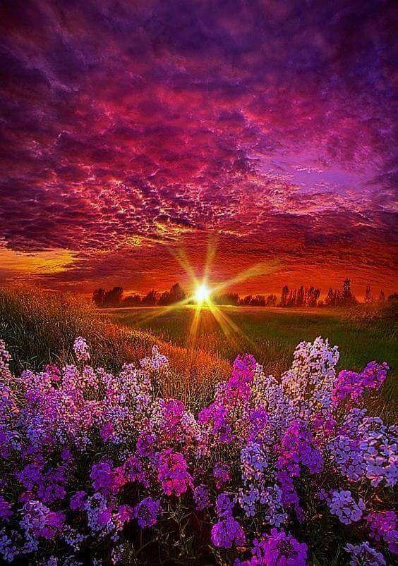Beautiful Red Tone Of Nature Colour Beautiful Landscapes Beautiful Nature Nature Photography