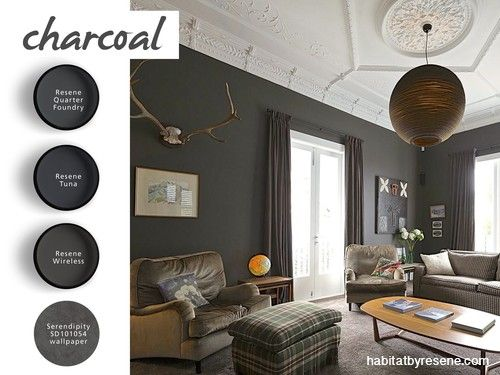 Elegant Dark Grey Interior Paint