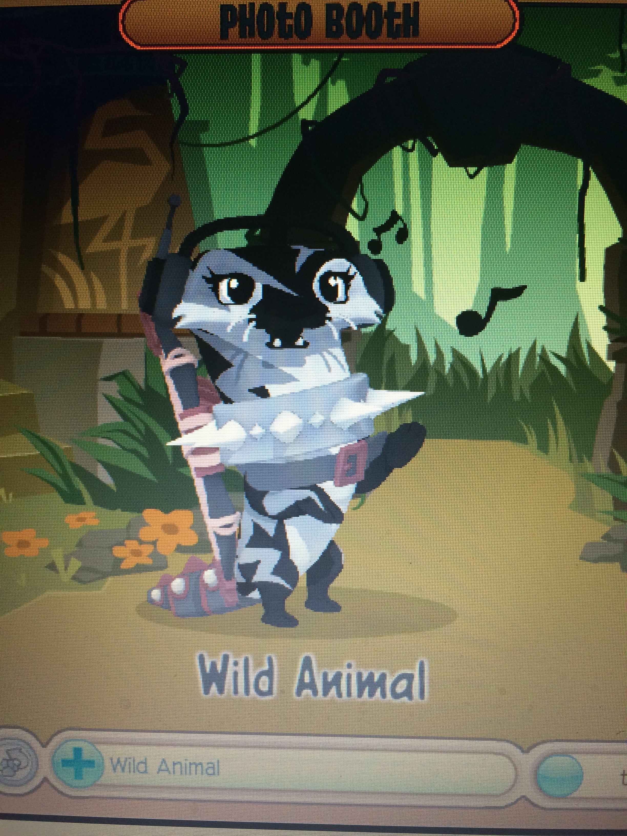 My new otter!!!! Yay I got one!!!! Animal jam, My buddy