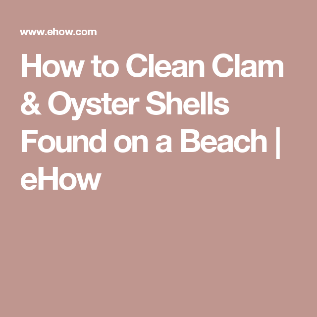 How to Clean Clam & Oyster Shells Found on a Beach | eHow