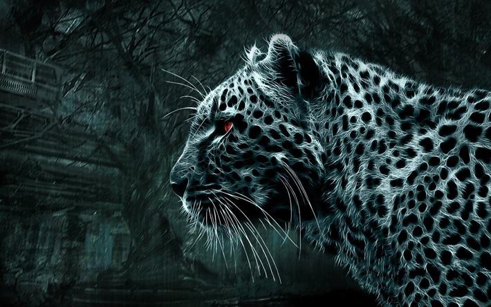 telecharger fonds d ecran leopard art 3d l obscurite les predateurs