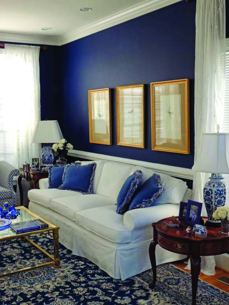 Incredible Blue Living Room Colour Suggestions Dova Home Living Room White Blue Walls Living Room Blue And White Living Room