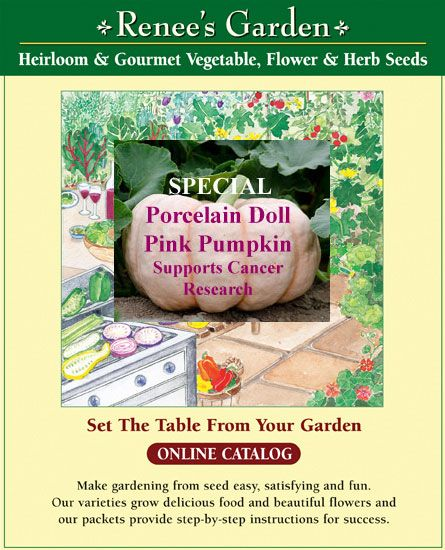 Renees Garden Seeds Online Catalog Of The Finest Heirloom And