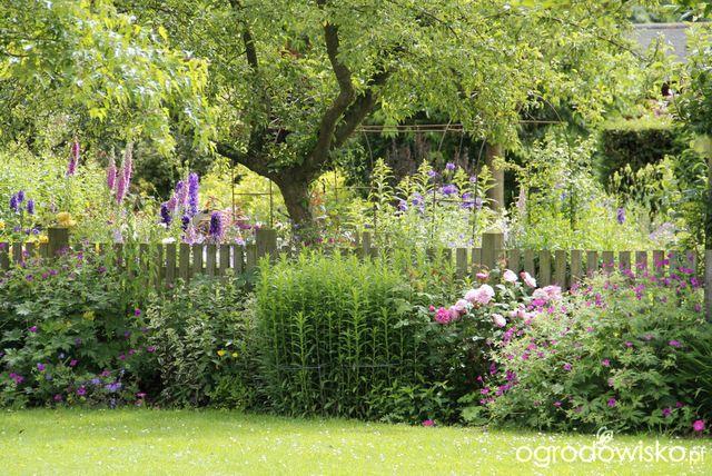 Galeria Zdjec Urocze Ogrody W Cieniu Ogrodowisko
