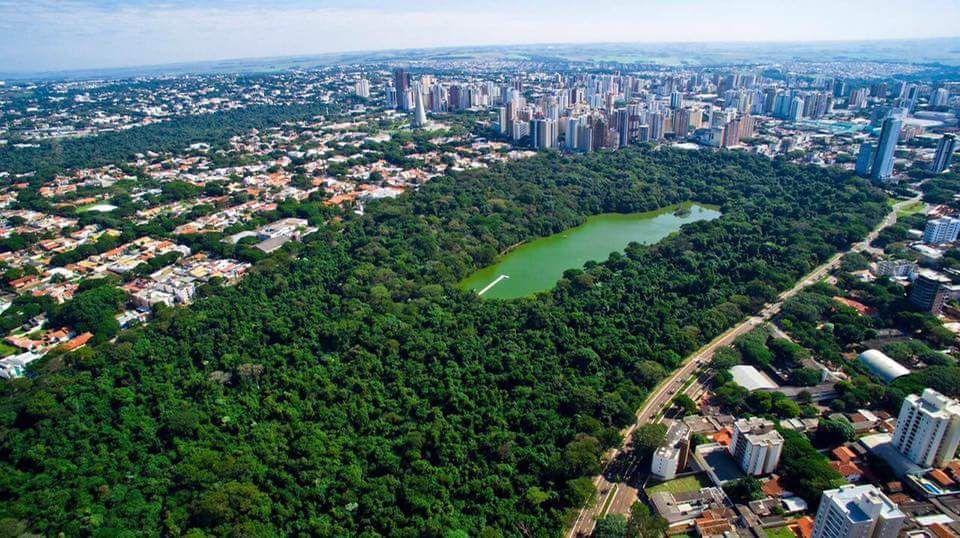 Parque do Ingá - Maringá-PR - Brasil (com imagens)   Brasil, Parque