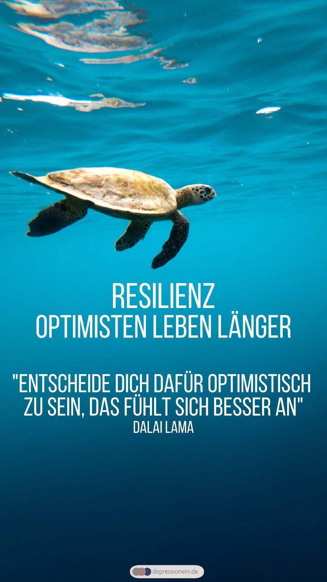 Optimisten Leben Langer Eine Positive Lebenseinstellung Fordert Offenbar Die Langlebigkeit Leben Gesundheit Durchhalten