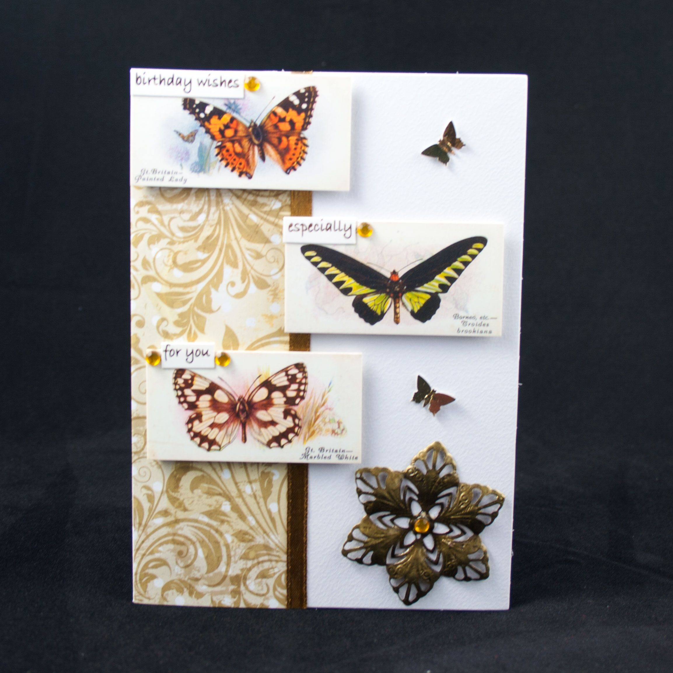 Handmade Birthday Card This Card Has Been Made With Butterfly
