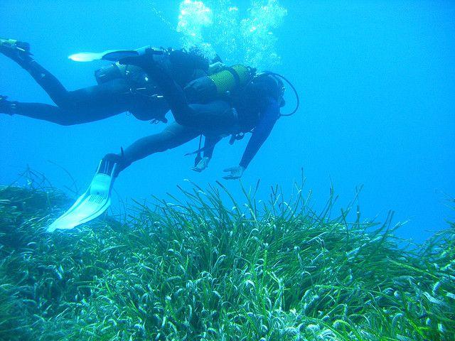 Diving in Asturias, Spain