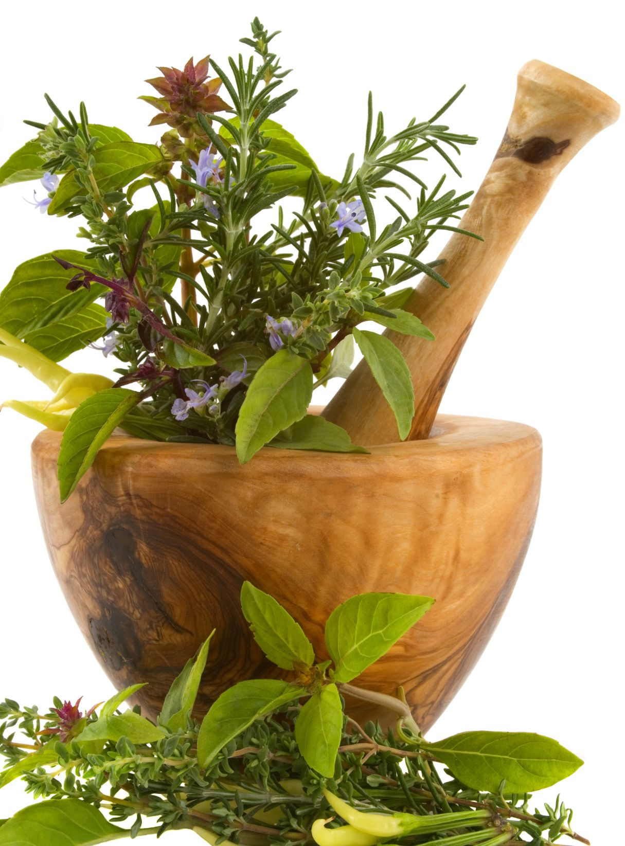 Cute gift idea...fill a mortar and pestle gift with fresh herbs.