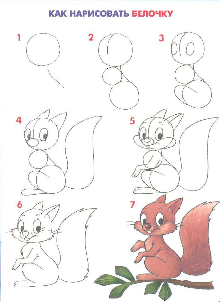 Eichhörnchen Best Zeichnen Zeichnen Lernen Und Malen Lernen