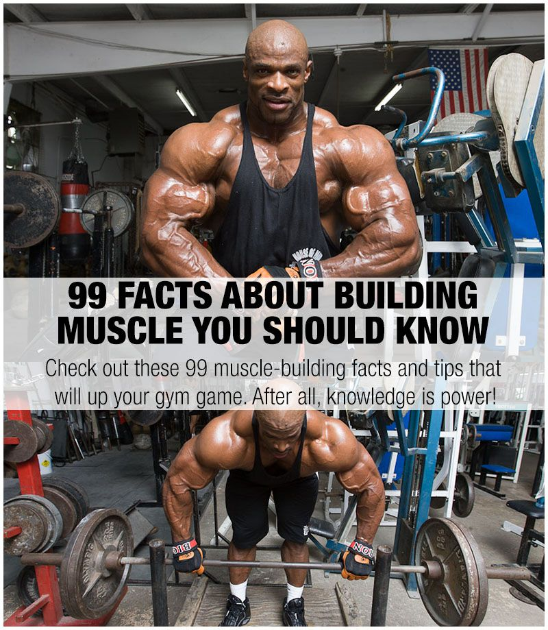 99 Facts About Building Muscle You Should Know Training