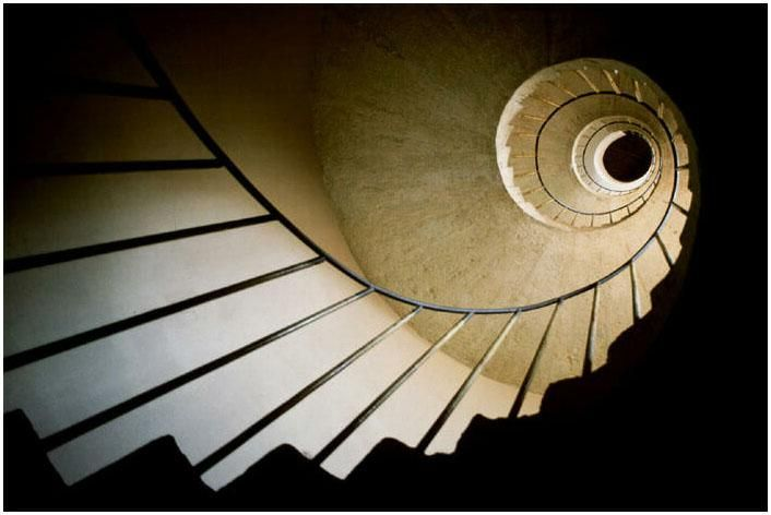 Why Fibonacci Faith | Spiral, Fibonacci spiral and Art google