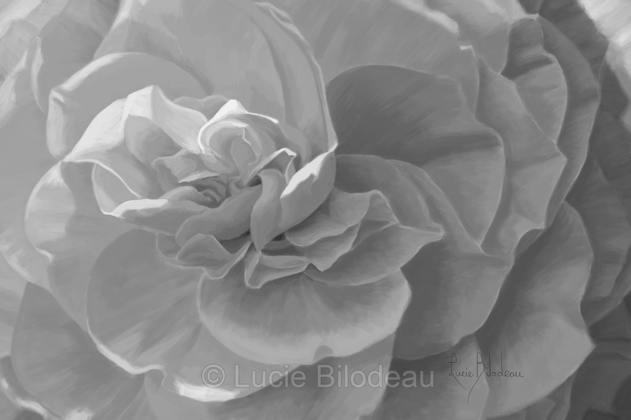 Black And White Version Of Lucie Bilodeaus Painting Cheerful