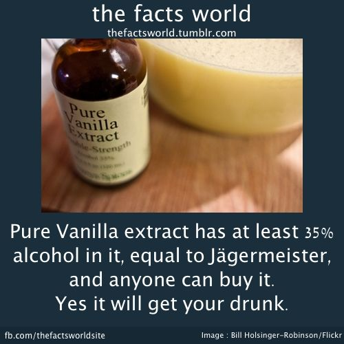 Thefactsworld Vanilla Extract Pure Products Alcohol