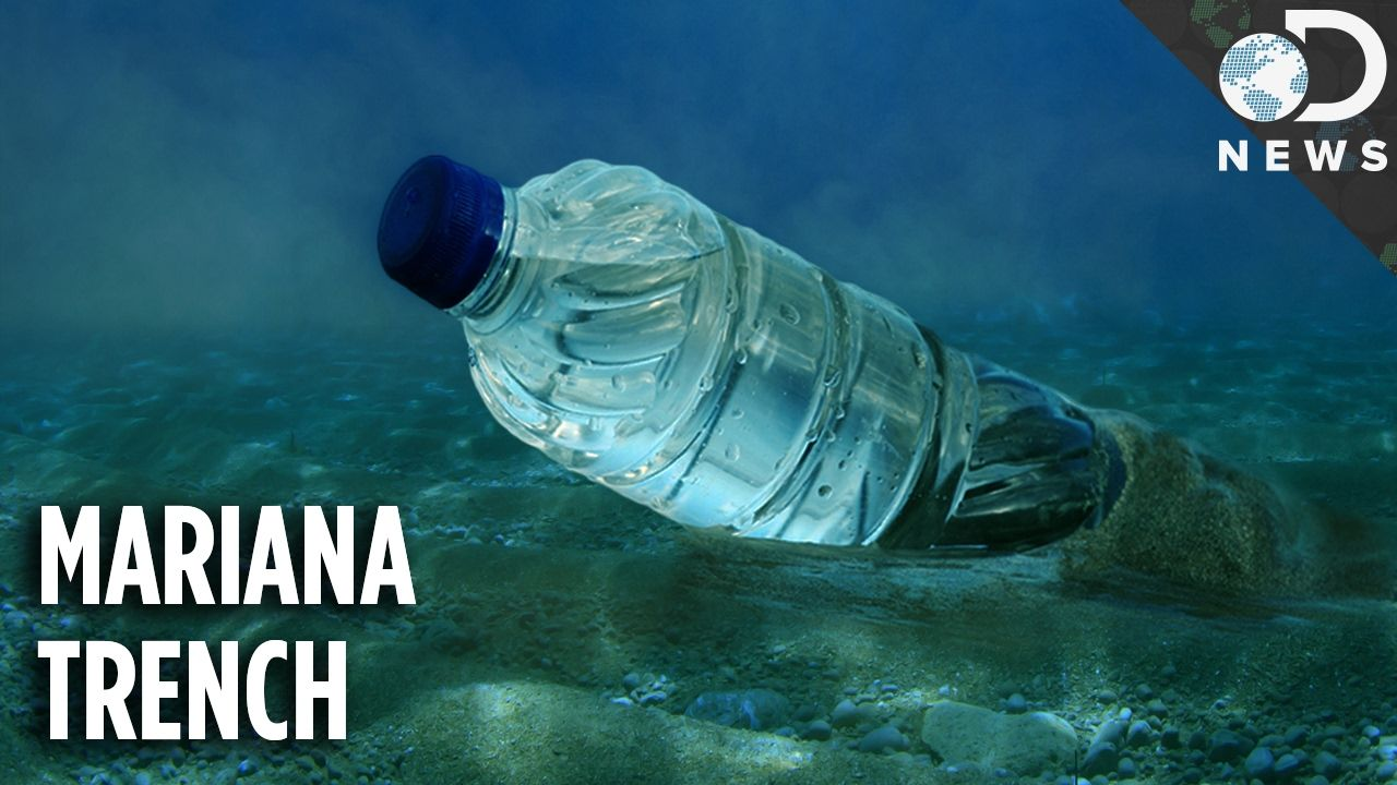 How did the deepest part of the ocean get so polluted