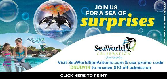 Take A Trip To Sea World San Antonio And Take 10 Off