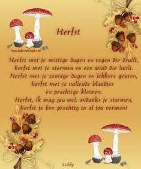 Afbeeldingsresultaat voor herfst gedichten