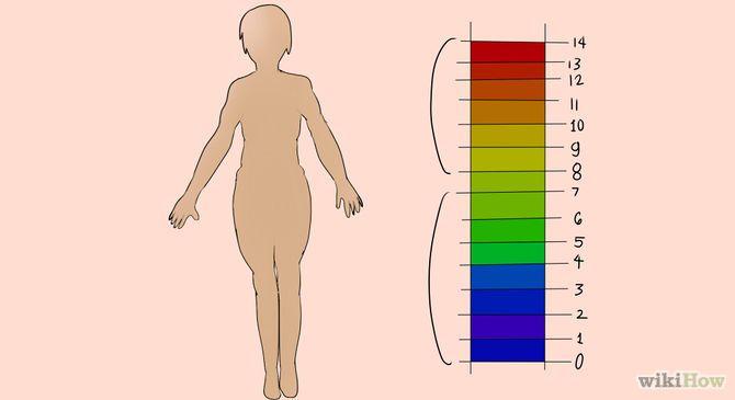 Cómo alcalinizar tu cuerpo
