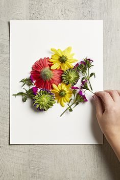 Our simple flower pounding technique makes it easy to transform fresh flowers into a gorgeous art piece. Grab a store-bought bouquet and turn the flowers into a pretty, handmade gift. #poundedflowerart #diy #craftideas #preserveflowers #bhg