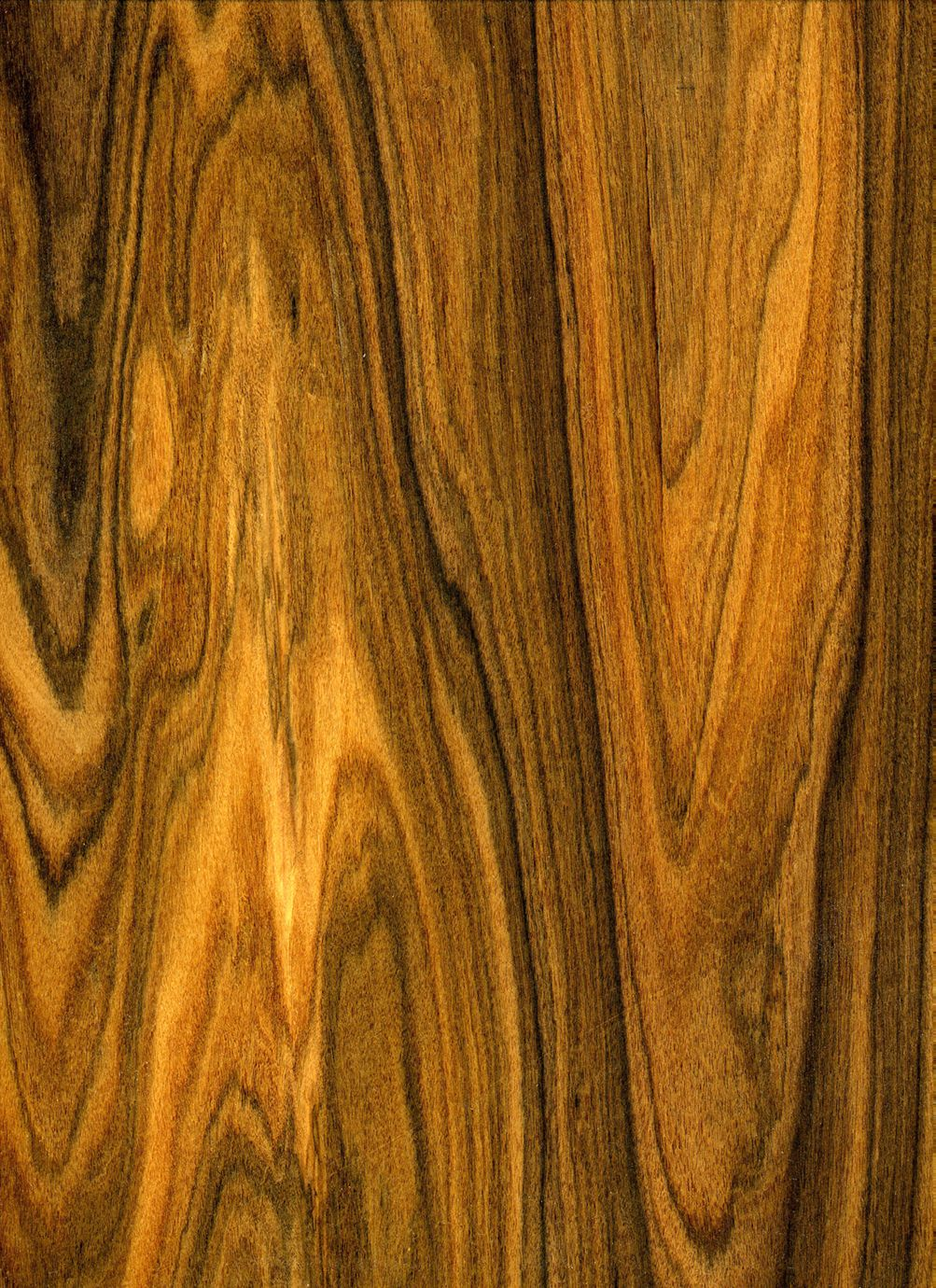 Exotic lumber inc stocks over species of wood