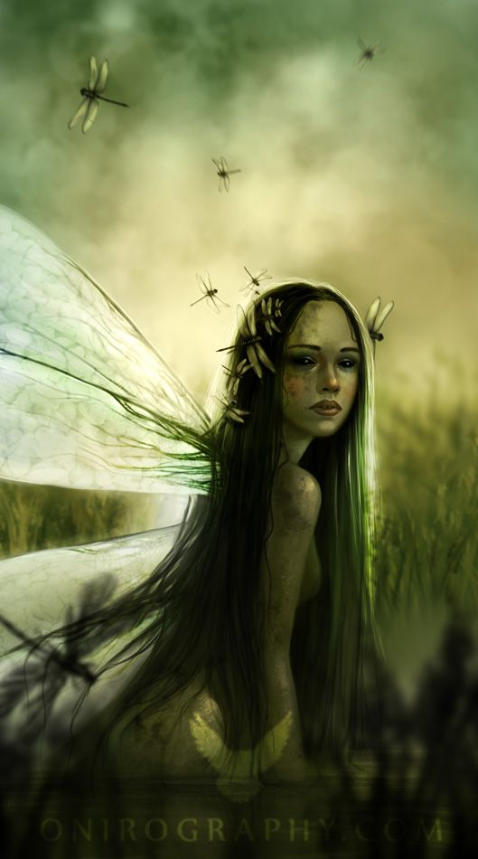 Dragonfly by *RozennIlliano on deviantART,  I think that maybe this is what you saw the other day by the pine tree, ha Biggy