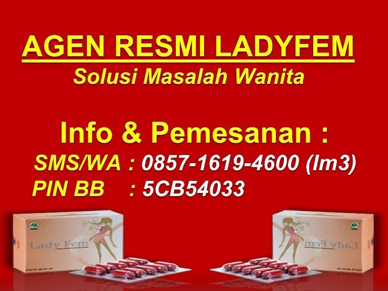 085716194600 (SMS/WA), Jual Ladyfem Di Bekasi Jual