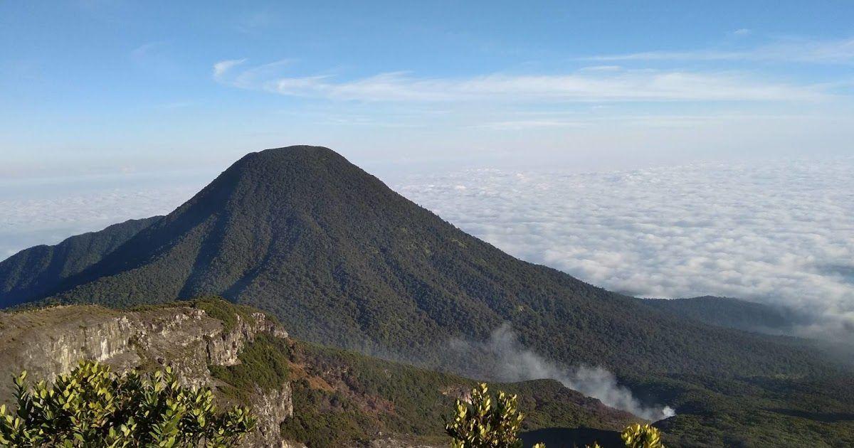 Gambar Pemandangan Gunung Gede Jika Anda Merupakan Penggemar Pemandangan Gunung Hamparan Surya Kencana Adalah Sebuah Pada Di 2020 Pemandangan Taman Nasional Gambar