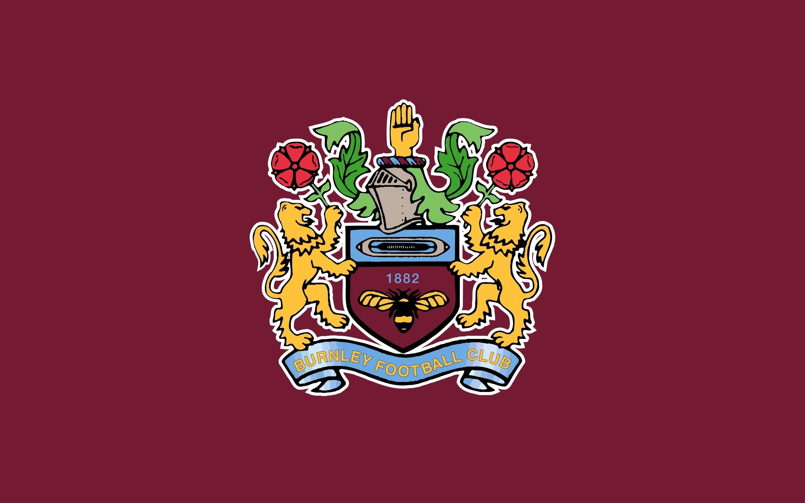 Burnley FC Background