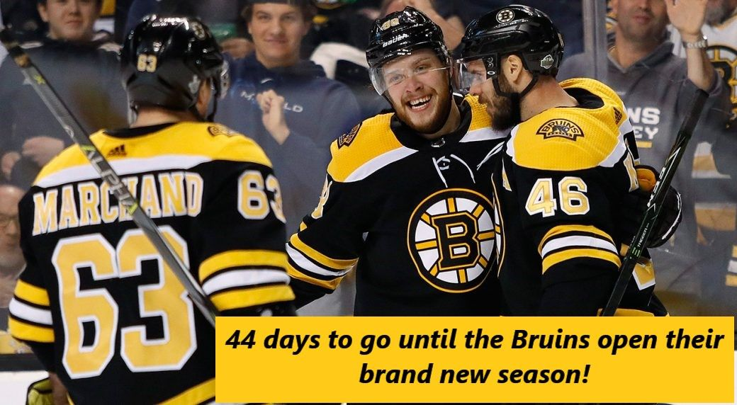 44 Days Until The New Bruins Season Bruins Countdown Bruins Hockey Teams Boston Bruins