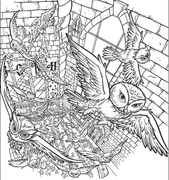 Coloriages A Imprimer Harry Potter Coloriage Harry Potter