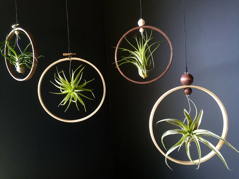 indoorgardening