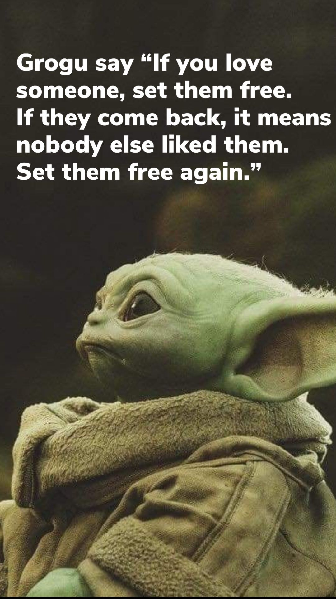 Pin By Jacqui Bell On Geek Pics For The Geek In Us All Yoda Funny Yoda Meme Funny Memes