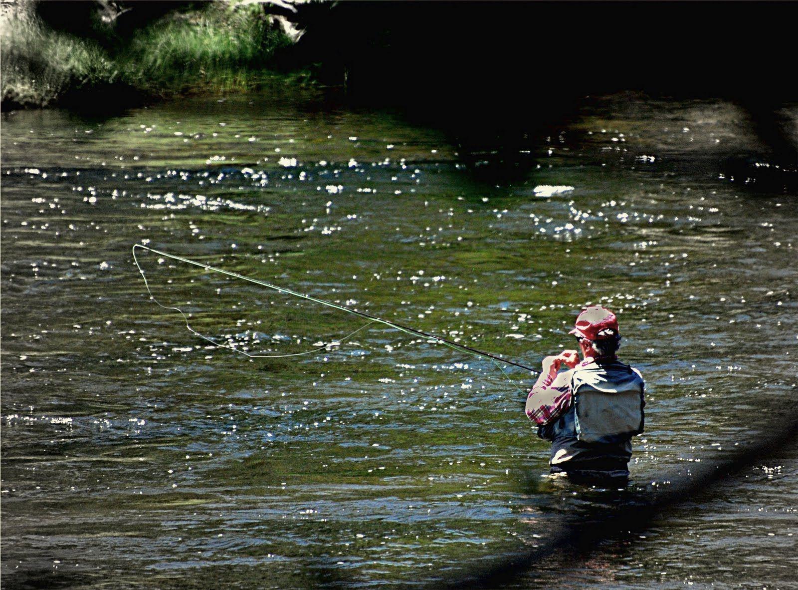 Pin On Camping Fishing
