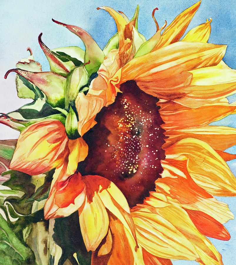 Tournesol By Diane Fujimoto Tournesols Peinture Fleurs Art Du