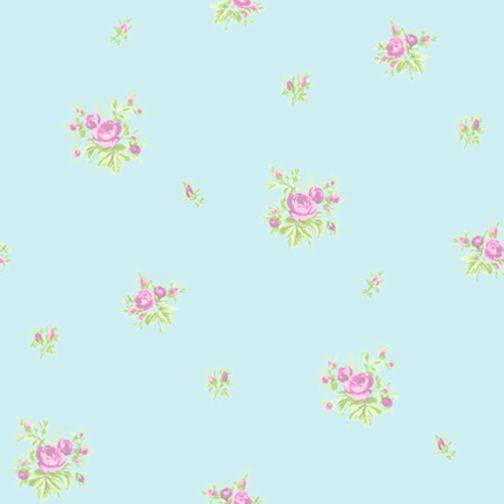Shabby Chic Wallpaper Border | ... Chintz Rose - Sky Blue Pink ...