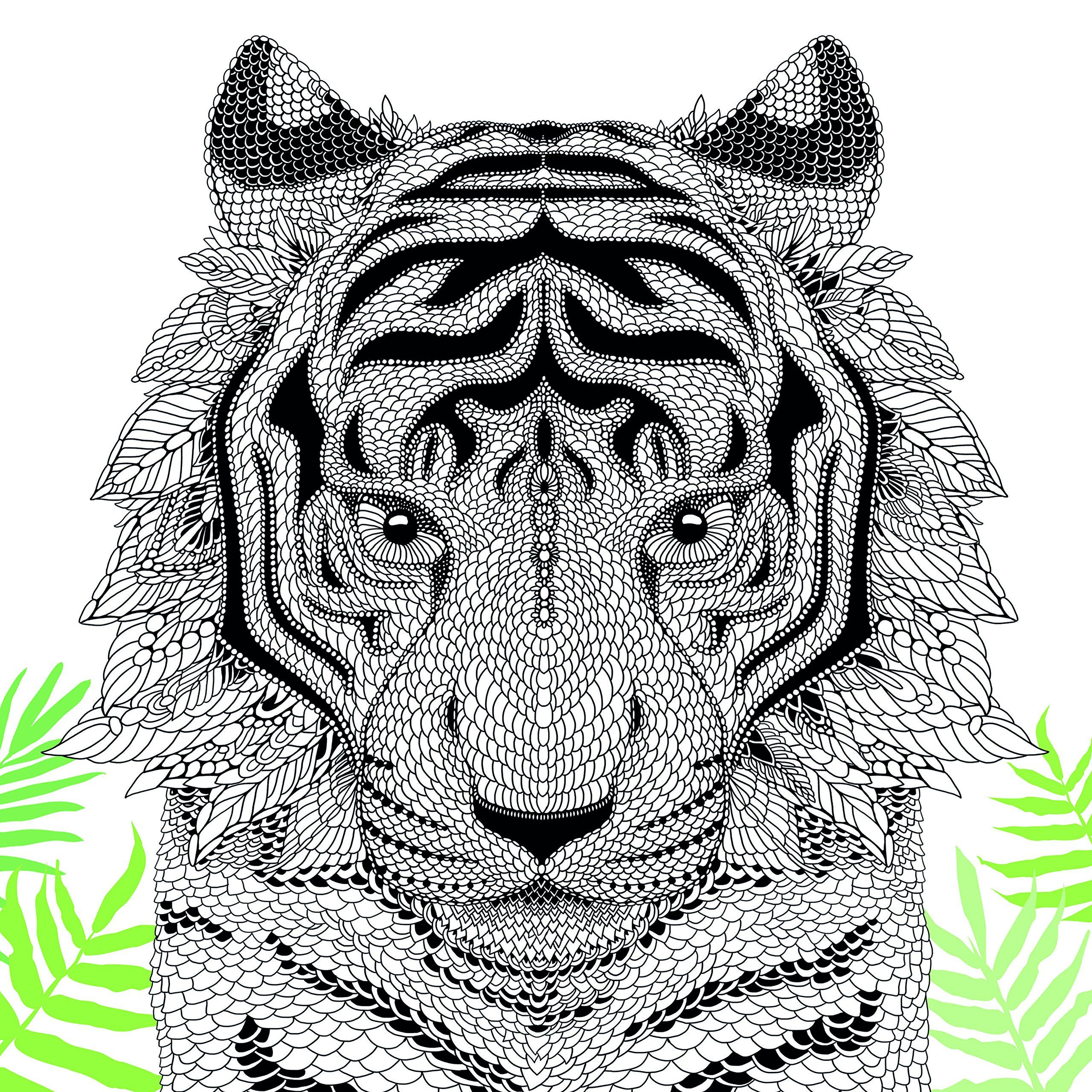 Buy the menagerie animal portraits to color book online at low